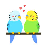 Cartoon Parakeets couple Royalty Free Stock Photography