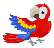 Cartoon Parrot Character Royalty Free Stock Image