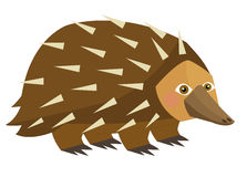 Cartoon parrot - echidna - isolated Stock Image