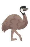 Cartoon parrot - emu - isolated Stock Photography