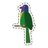 Cartoon parrot exotic bird nature Royalty Free Stock Photos