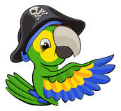 Cartoon Parrot in Pirate Hat Stock Images