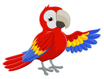 Cartoon Parrot Pointing Stock Image