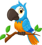 Cartoon parrot sitting on tree branch Stock Photography