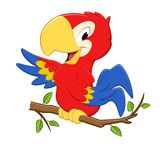 Cartoon Parrot. Vector illustration of a cartoon tri-colored parrot for design element Royalty Free Stock Photos