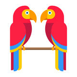 Cartoon parrot vector Stock Images