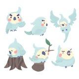 Cartoon parrots set. Royalty Free Stock Images