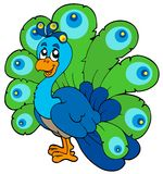 Cartoon peacock Stock Photos