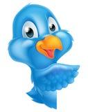 Cartoon Peeking Pointing Bluebird Royalty Free Stock Photo