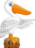 Cartoon Pelican in the bay. Illustration of Cartoon Pelican in the bay Stock Images