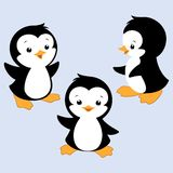 Cartoon Penguin. Vector illustration of three baby penguins for design element Royalty Free Stock Image
