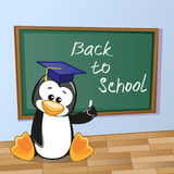 Cartoon Penguin wrote in classroom. Cartoon Penguin wrote chalk on a blackboard Royalty Free Stock Images
