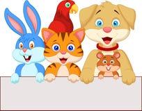 Cartoon pet animals holding blank paper Royalty Free Stock Photography
