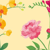 Cartoon petal vintage floral background vector bouquet garden flower botanical natural peonies illustration and summer. Floral greeting card spring blossom royalty free illustration