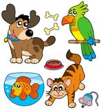Cartoon pets collection Stock Images