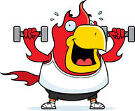 Cartoon Phoenix Dumbbells. A cartoon illustration of a phoenix lifting dumbbell weights Stock Images