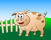 Cartoon pig Royalty Free Stock Photos