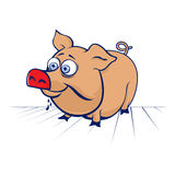 Cartoon pig Royalty Free Stock Photography