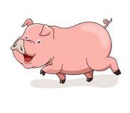 Cartoon pig. Smile isolated on white Royalty Free Stock Image