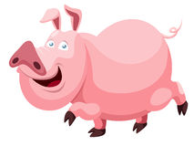 Cartoon pig Royalty Free Stock Images