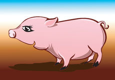 Cartoon Pig Stock Images