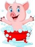 Cartoon pig bathing waving hand Royalty Free Stock Image