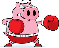 Cartoon Pig Boxing Stock Photos