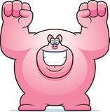 Cartoon Pig Celebrating Royalty Free Stock Images