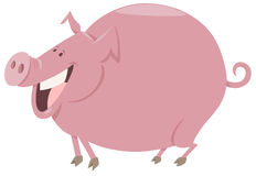 Cartoon pig farm animal character Royalty Free Stock Photography