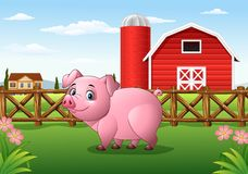 Cartoon pig in the farm background Stock Photography