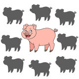 Cartoon pig. Find the right shadow image. Educational games for kids. Cartoon pig Royalty Free Stock Images