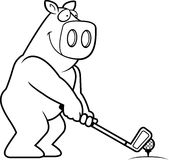 Cartoon Pig Golfing Stock Image