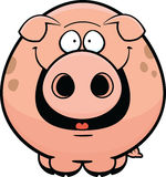 Cartoon Pig Happy Stock Images