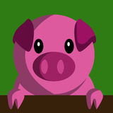 Cartoon pig holding banner Stock Photography
