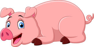 Cartoon pig lay down Stock Photo