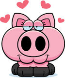 Cartoon Pig Love Royalty Free Stock Photos
