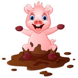 Cartoon pig play in a mud puddle Royalty Free Stock Photos