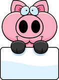 Cartoon Pig Sign Royalty Free Stock Images