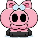 Cartoon Pig Smiling Royalty Free Stock Image
