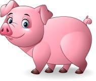 Cartoon pig on white background