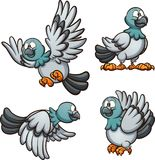 Cartoon pigeon in different poses Royalty Free Stock Photos