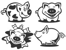 Cartoon piggies Royalty Free Stock Photos
