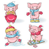Cartoon pigs Royalty Free Stock Photography