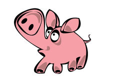 Cartoon pink  pig isolated on white Stock Photos