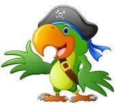 Cartoon pirate parrot Royalty Free Stock Photos