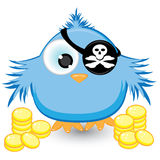 Cartoon pirate sparrow with gold coins. Illustration on white background Royalty Free Stock Images