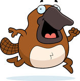 Cartoon Platypus Running Royalty Free Stock Image