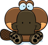 Cartoon Platypus Sitting. A cartoon illustration of a little platypus sitting and smiling Stock Photos