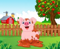 Cartoon play pig slurry in the farm Royalty Free Stock Images