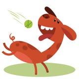 Cartoon playful dog. Playing with ball vector illustration